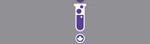 CWSF logo